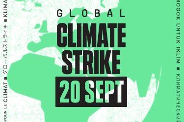 Global Climate Strike. Mai multă educație pentru mediu